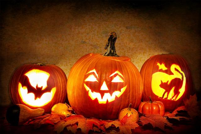 かぼちゃの写真画像
