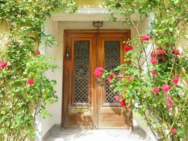 玄関の写真画像